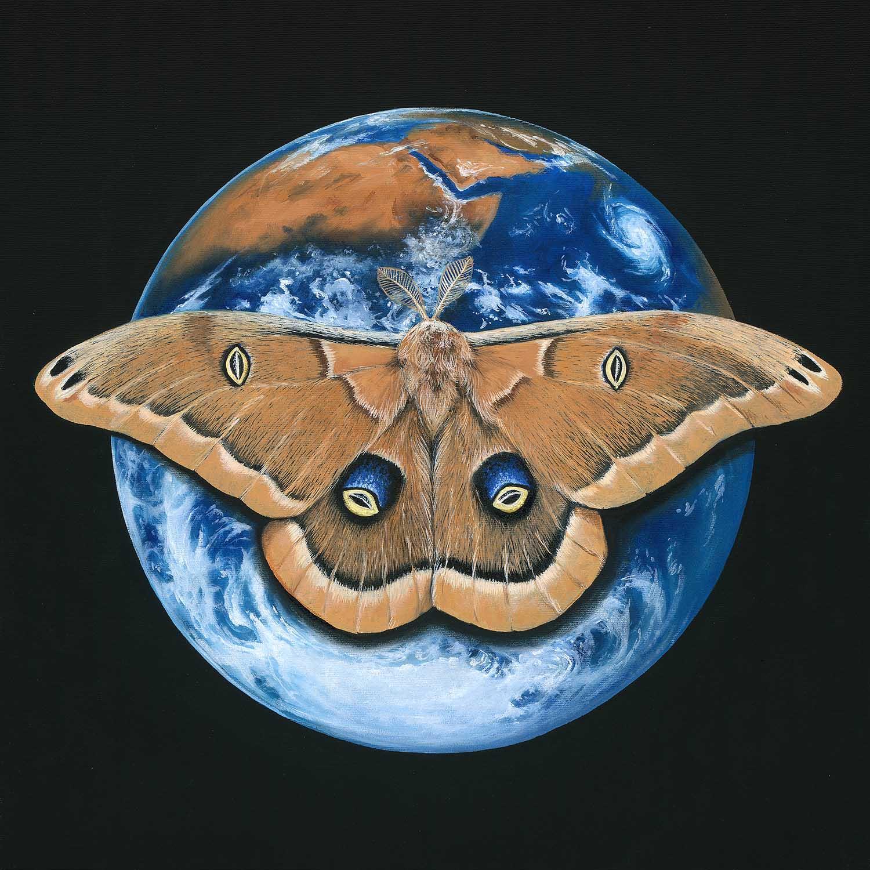 Erde & Nordamerikanischer Seidenspinner 50x50cm / Serie: Nachtschwärmer © Rita Stern Kunst Miltenberg