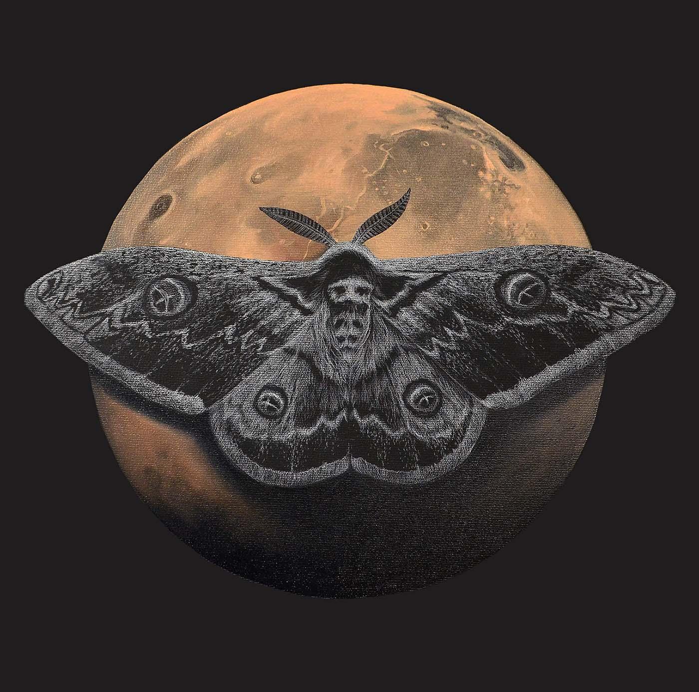 Mars & Wiener Nachtpfauenauge / Mischtechnik auf Leinwand 50x50cm © Rita Stern Miltenberg