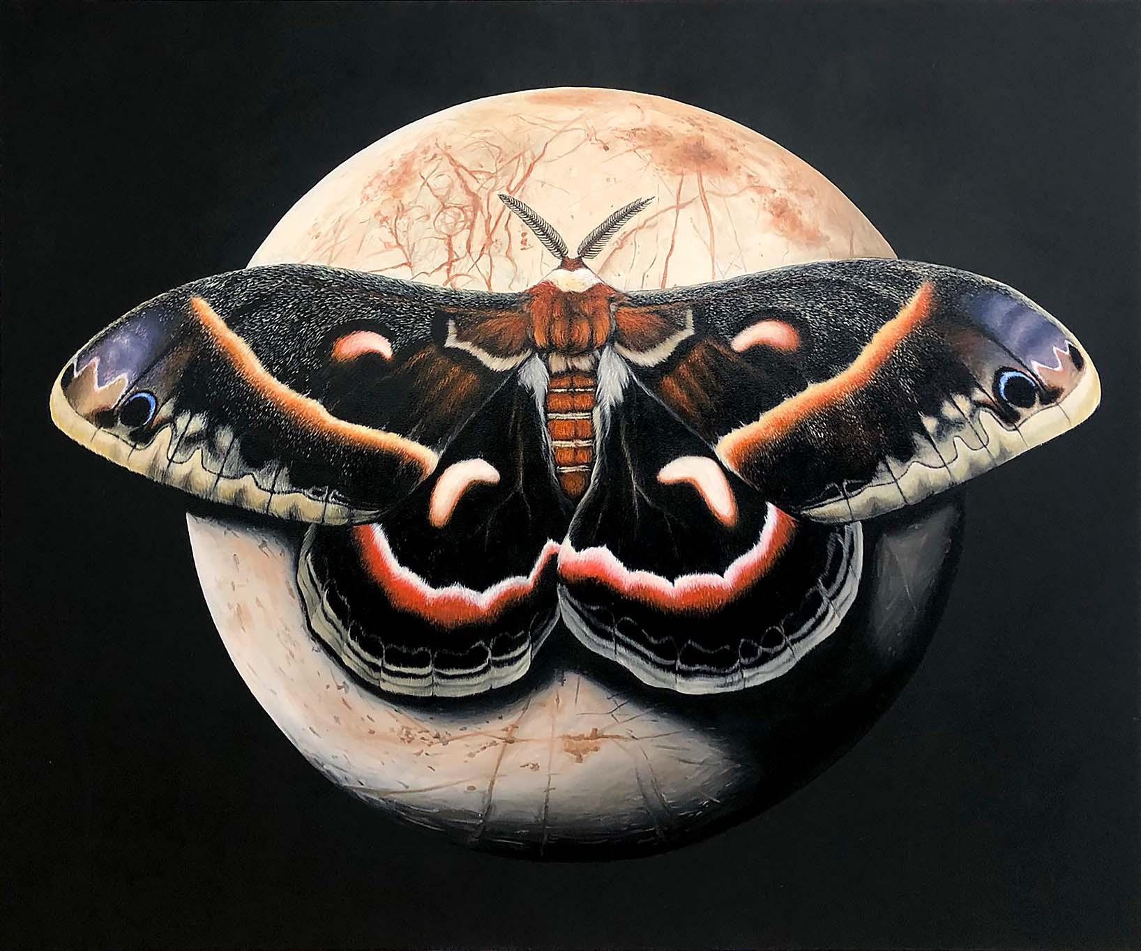 Riesen Silkworm Motte und Jupiter-Mond Europa / Öl auf Leinwand 100x120cm © Rita Stern Miltenberg
