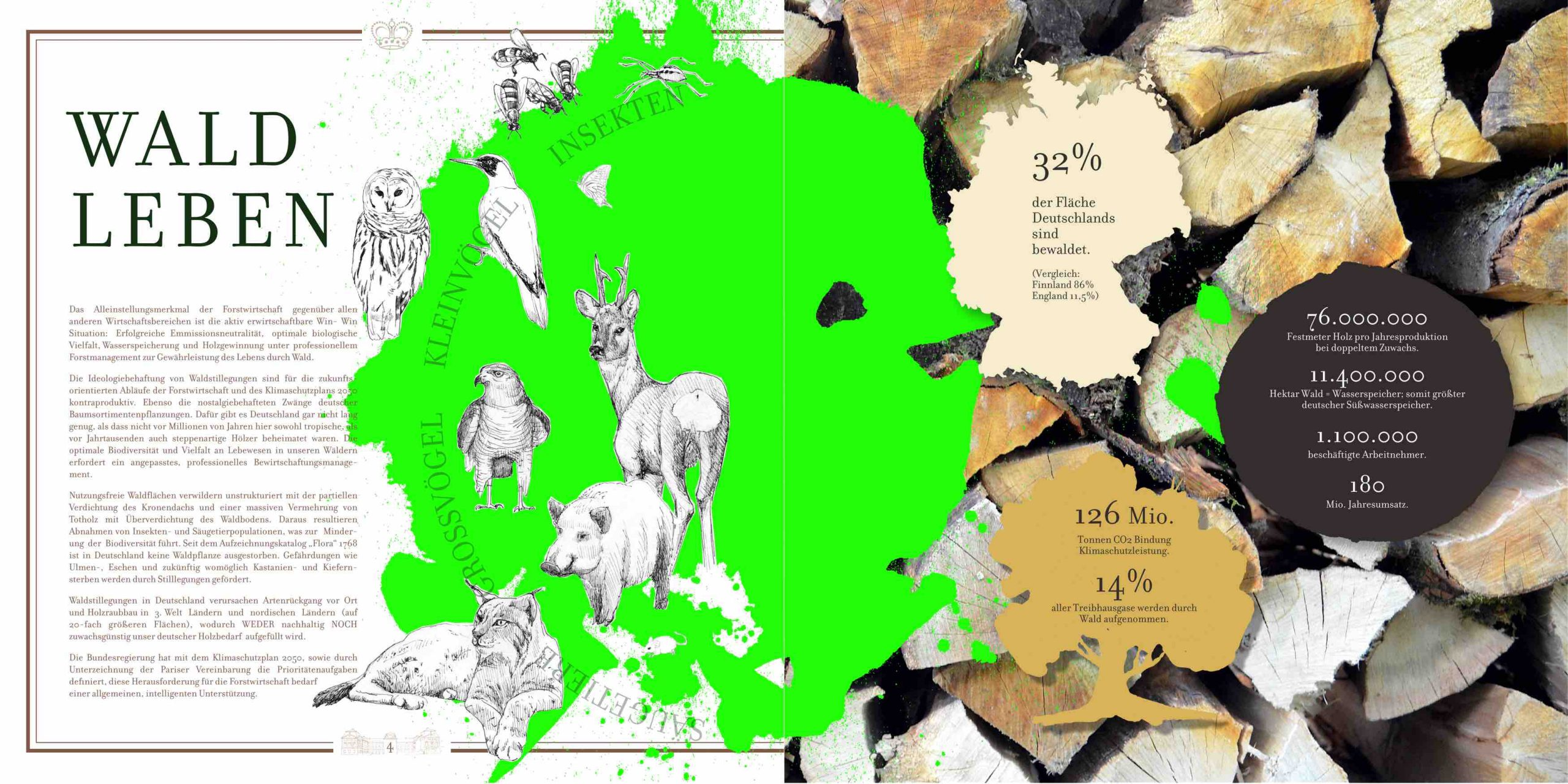 Grafikdesign und Illustration / Waldbroschüre Zu Löwenstein